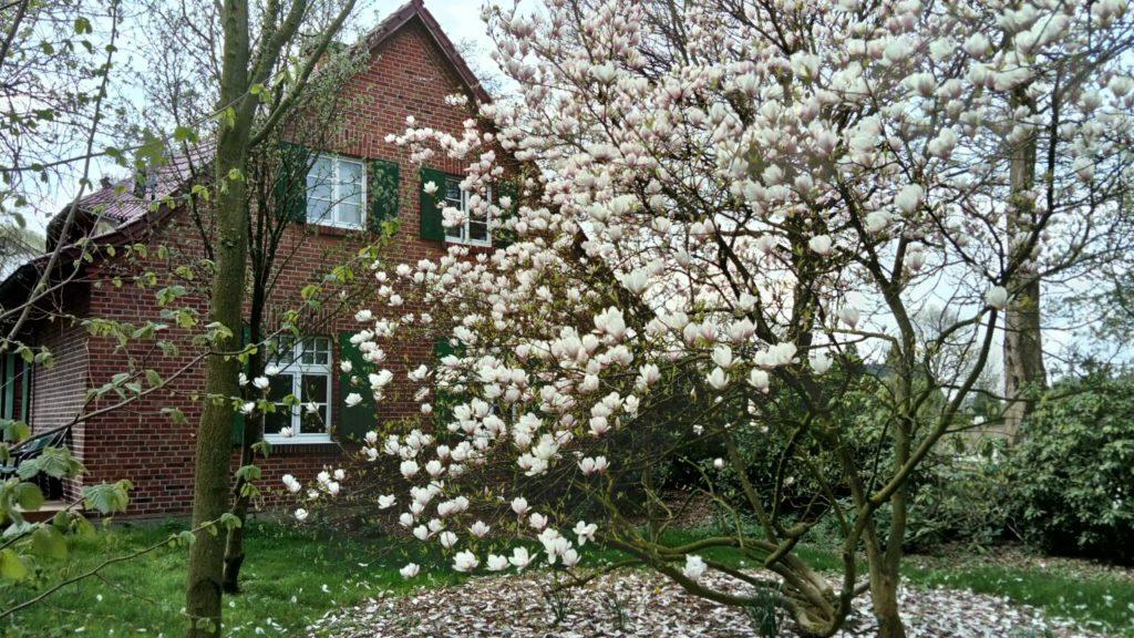 Schönes Bauernhaus mit Garten