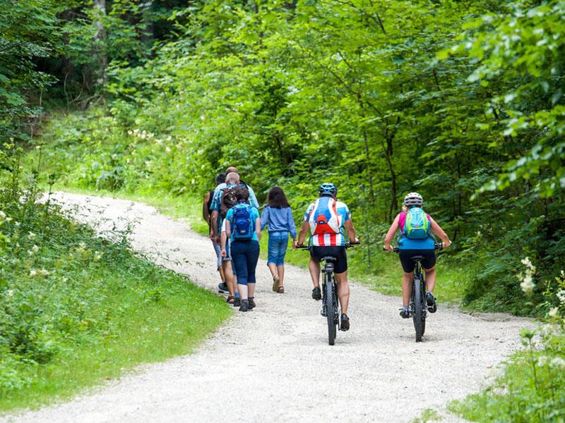 Münsterland: Beliebtes Reiseziel für Radfahrer und Wanderfreunde